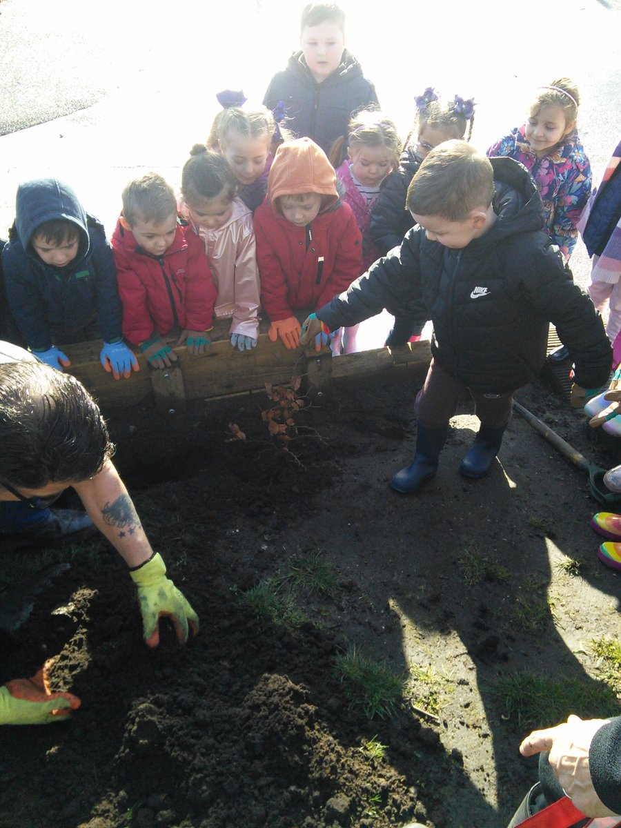 We had an amazing day working with @merseyforest @Trees4Learning to plant trees in our Forest School Area. All the children in Y1 and Y3 worked so hard to plant the saplings and the sun shone! We are looking forward to watching our forest grow. @SpringwellYear1 @SpringwellYear3