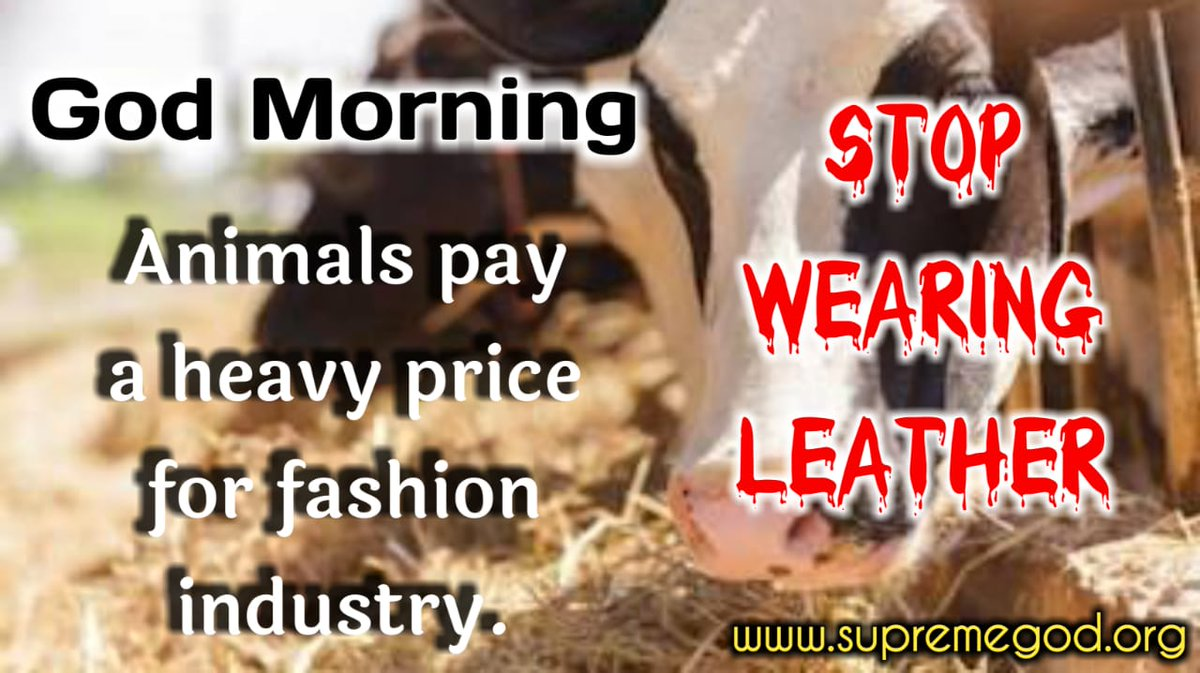 #GodMorningFridayStop killing animals and stop using leather. For more information, see Ishwar TV from 8:30 to 9:30@PMOIndia@AmitShah @rashtrapatibhvn @Zee_Hindustan @ZeeNewsHindi @ABPNews @aajtak @news18 @news24tvchannel @Daliynews4 @BBCWorld @myogiadityanath