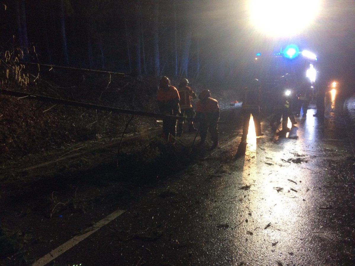 Nach dem Sturm gestern habe wir noch in der Nacht zwei Bäume, die über der Fahrbahn (K1227) lagen, beseitig.  #WirFürLE #FreiwilligStarkFürLE #FeuerwehrLE #FFLE #70771 #LeinfeldenEchterdingen #SeiDabei #Ehrenamt #Feuerwehr ^czpic.twitter.com/hGuJr7RLHi