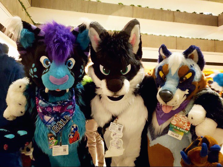 RT @_foxchow: 🐈+🐕+🐕 = #FursuitFriday  Forgot the middle suiters tag! D: https://t.co/waxxOXnkfe