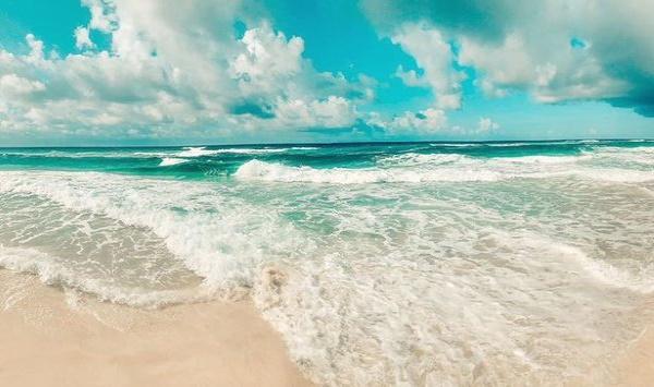 . - 𝗡𝗘𝗪 𝗟𝗶𝘀𝘁𝗶𝗻𝗴𝘀: 𝗕𝗲𝗮𝗰𝗵 𝗛𝗼𝘂𝘀𝗲𝘀 & 𝗖𝗼𝗻𝗱𝗼𝘀 - 𝗚𝘂𝗹𝗳 𝗦𝗵𝗼𝗿𝗲𝘀 · 𝗢𝗿𝗮𝗻𝗴𝗲 𝗕𝗲𝗮𝗰𝗵 · 𝗣𝗲𝗿𝗱𝗶𝗱𝗼 𝗞𝗲𝘆   #Beach #Condo #RealEstate #GulfShores #OrangeBeach #PerdidoKey #Destin #PCB #PanamaCityBeach