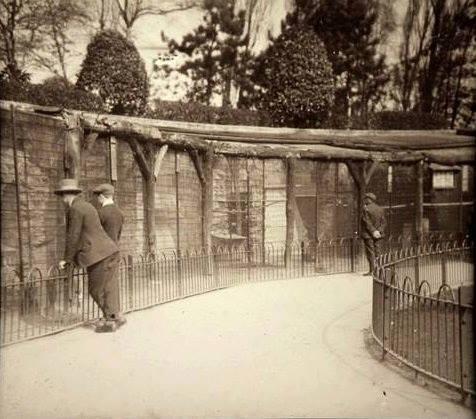 Sefton Park aviary