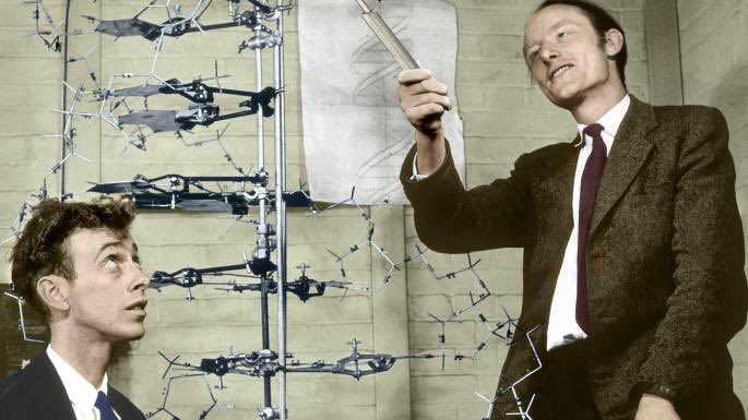 February 28 - 1953: England - the discovery of the double-helix structure of DNA was announced by scientists Francis Crick and James Watson.