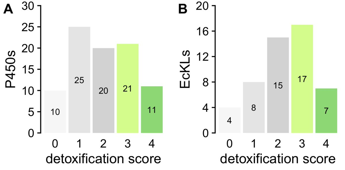 """Combining all this together, I made a """"detoxification score"""" (3-4 means 'maybe detox?') based on the above characteristics. The score is very accurate at predicting known functions of Drosophila P450 genes, and suggests about half of EcKLs encode detox enzymes. pic.twitter.com/EhGmyTC4SD"""