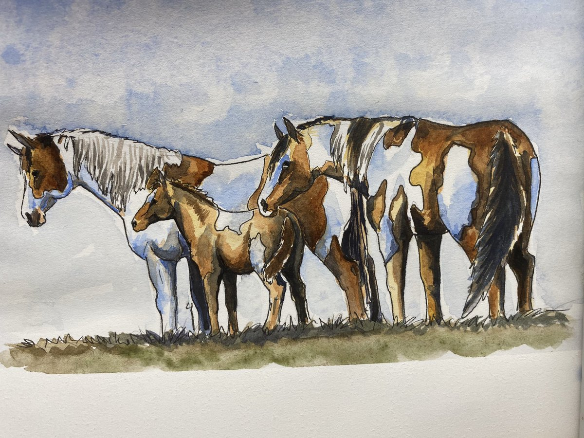 Today's pen and watercolour horses , done for my twitch channel It was such a relaxing way to spend the morning pic.twitter.com/lMztUawSck