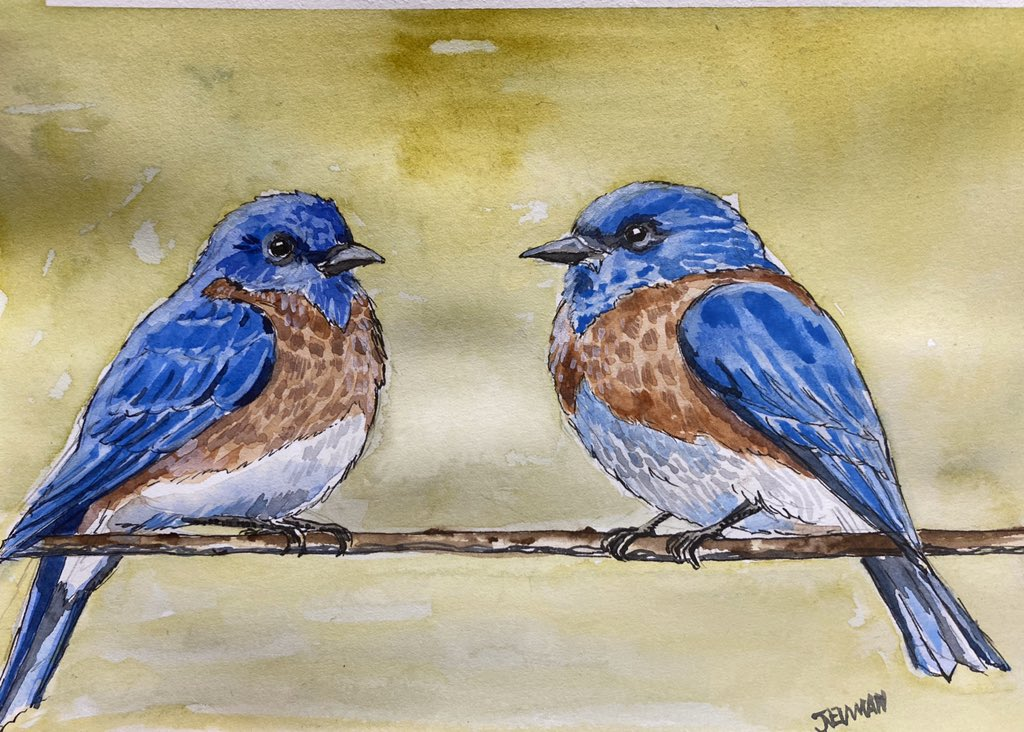 Second pen and watercolour for the morning , two blue birds sitting on a branch , also done live on my twitch channel , I'm happy with these little birds pic.twitter.com/RYpQZwHSmM