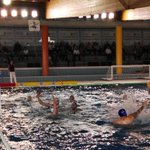 Image for the Tweet beginning: #Alcorcón #waterpolo @AlcorconDeporte @AytoAlcorcon Campeonato