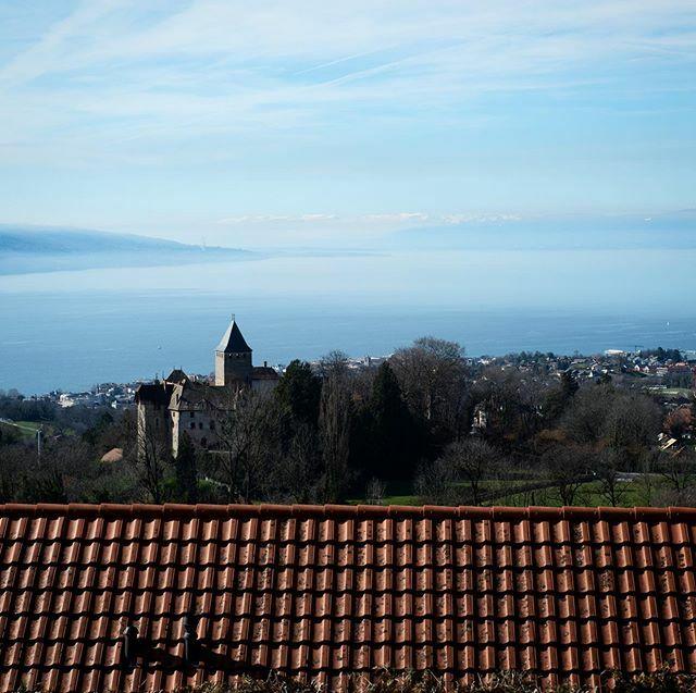 *** Château Du Châtelard | Lac Léman *** #chateauchatelard #chateauduchatelard #lacléman #lacleman#lacleman #genfersee #inlovewithswitzerland #visitswitzerland #letsgosomewhere #discoverearth #natureaddict #naturelovers #thewanderco #blickheimat #ourpl… https://ift.tt/38G1RlKpic.twitter.com/sQgWUkHf8R