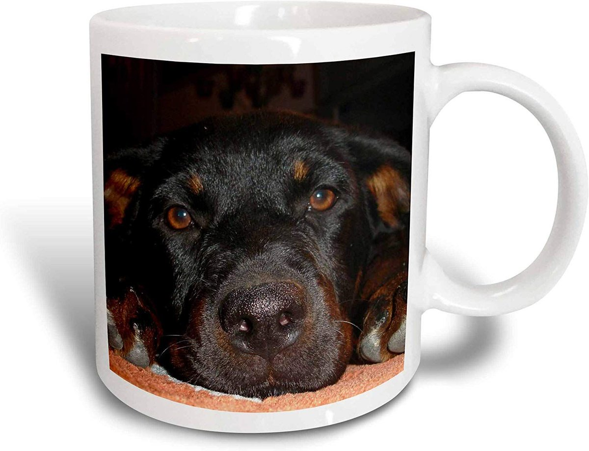#RottieLover #Rottiebaby #RottieMom #RottieGifts #RottweilerPuppy A #perfectgift and #mug for any occasion. For coffee if hotchocolate is not your cupoftea.  A #fun and #unique #giftidea. @3DRose #ATSocialMedia   via @amazon