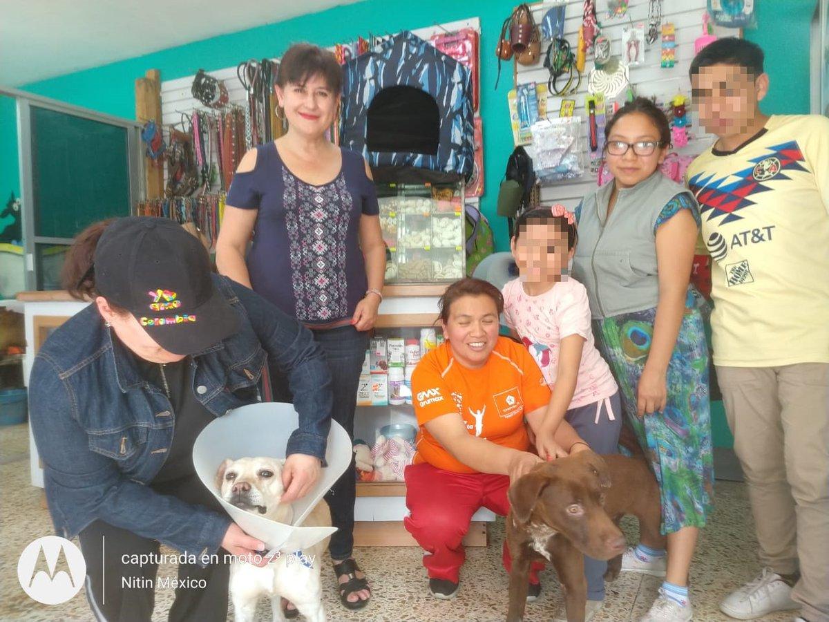 #ParaCompartir gracias al apoyo de nuestros oficiales en conjunto de la Camada Nitin Neza lograron la adopción de dos canes que la semana pasada fueron apoyados por elementos de nuestra corporación#SomosMasLosBuenos