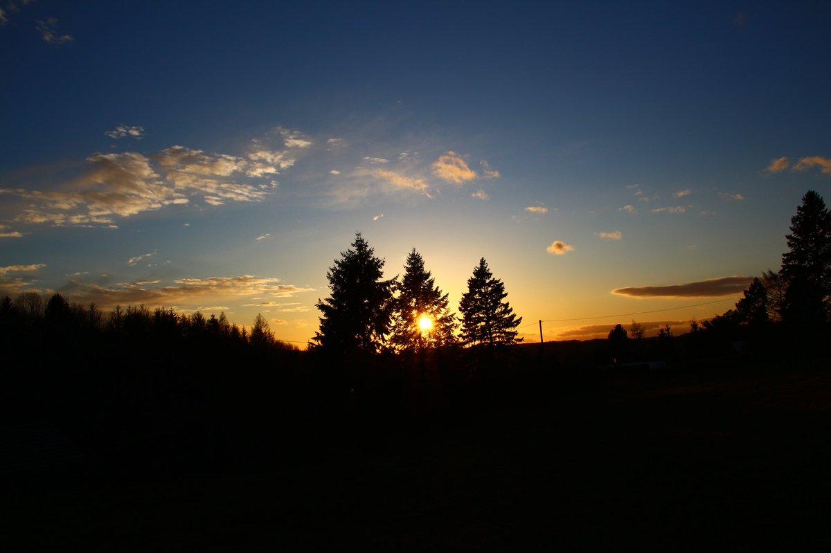 Ein wundervoller Tag geht zu Ende. Ich werde mich jetzt in die Federn        fallen lassen und mit Sicherheit              sehr gut schlafen.                    Gute Nacht & schöne Träume           wünsche ich Euch.                Bis morgen              pic.twitter.com/QGGfxo3jm6