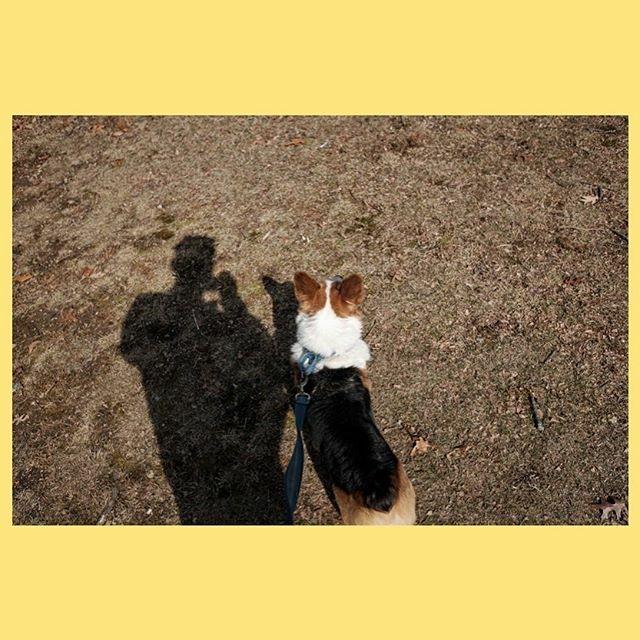 ... . . . #flakphotorecs #fotomobile  #myfeatureshoot #igersboston #childhoodeveryday  #familyphotographynow #burnmyeye #archivecollectivemag #TPgallery  #ifyouleave  #justgoshoot  #peoplescreatives #instagoodmyphoto #conceptualphotography#artisticphot… https://ift.tt/2SCdncepic.twitter.com/x9ZTGJrMCi