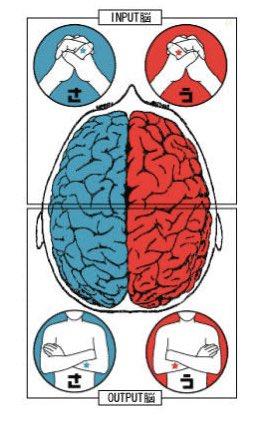 ささ脳(わかる)