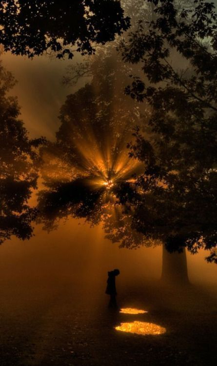 We've all got both light & dark inside us. What matters is the part we choose to act on. That's who we really are. JK Rowling #writing #film pic.twitter.com/UGxc3Vi4zY