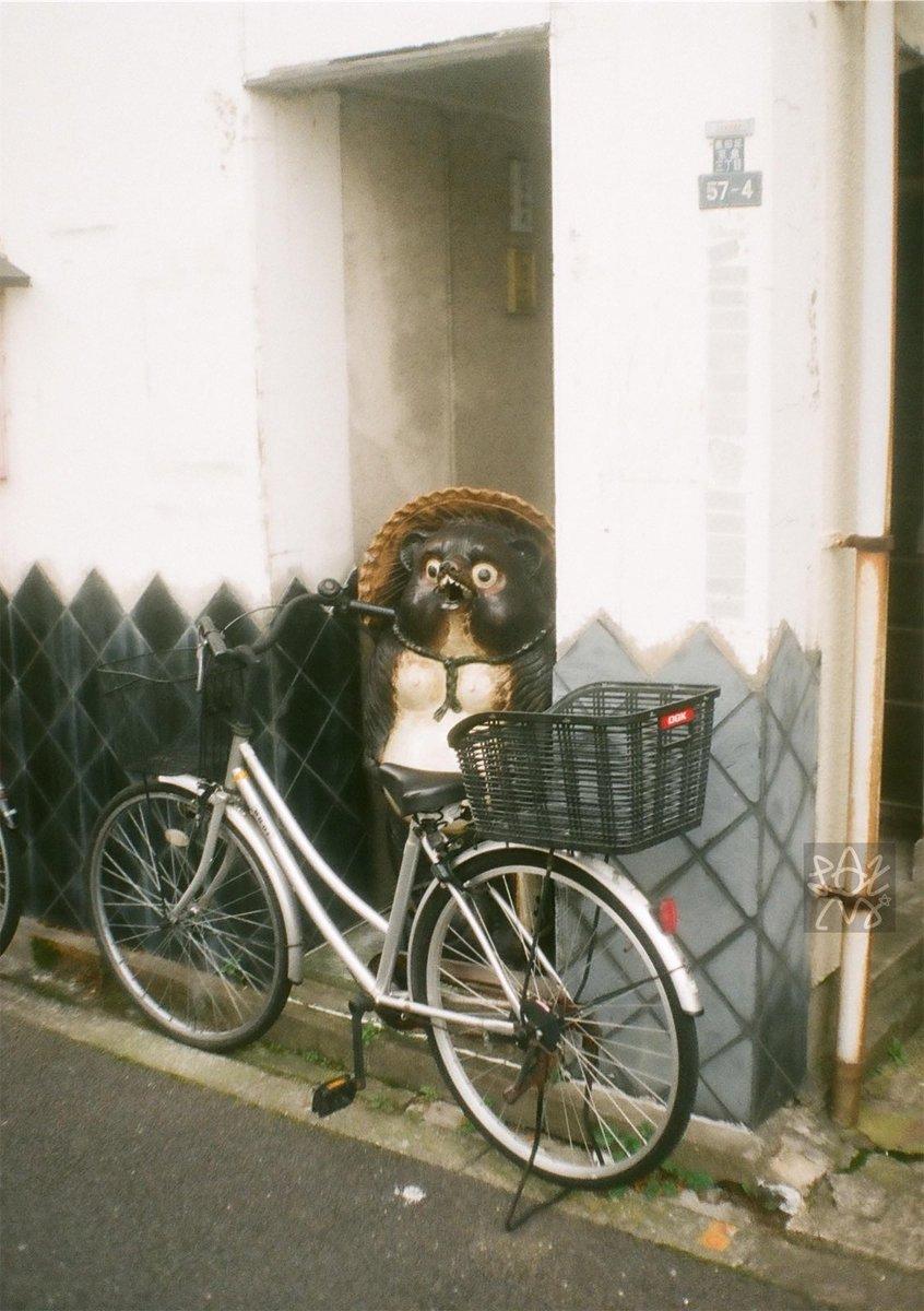 1日1輪       〜たぬき〜  Petri Half / A.C Petri Orikkor 28mm F2.8  1960Japan  縦構図 Fuji業務用100 #film #filmphotography #filmcamera #カメスズ #チャンプカメラ #フィルム写真 #フィルムカメラ #撮り輪 #とりりん #自転車 #bicycle #二輪車 #Twowheelerpic.twitter.com/COLls5h9ut