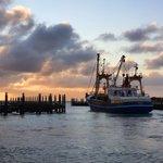 Image for the Tweet beginning: Dinsdagmorgen.  #goedemorgen #Texel #visserij #versevis