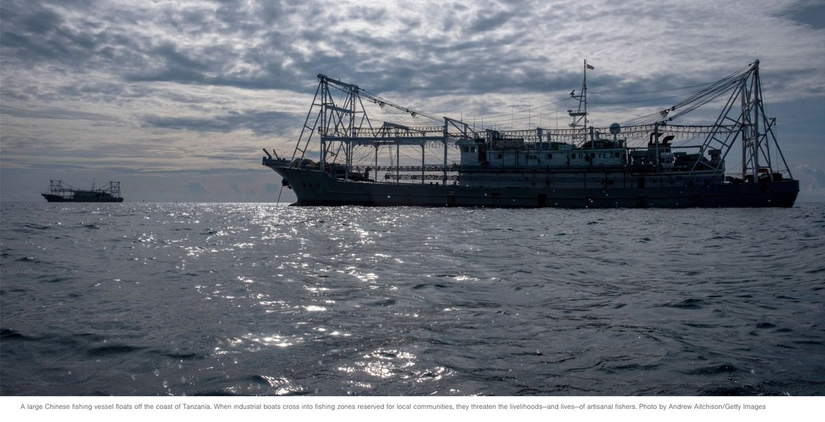 Africas coastal waters have long been attractive to industrial fishing fleets from other countries. But as valuable fish stocks dwindle, these large vessels are creeping shoreward & illegally crossing into zones reserved for small-scale fishing communities https://www.hakaimagazine.com/news/the-african-coastline-is-a-battleground-for-foreign-fleets-and-artisanal-fishers/?fbclid=IwAR0IFd_T7YVcOHTOZIuuNscAiKBpgTrCDN5hOG0NF1WuOCxTtHZ-nfHwwbo …pic.twitter.com/fu03ZnkxfS
