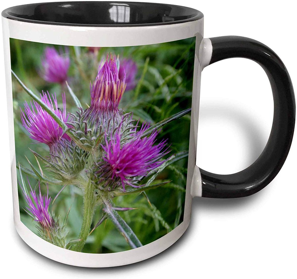 #SyrianThistle #Notobasissyriaca A #perfectgift and #mug for any occasion. For coffee if hotchocolate is not your cupoftea.  A #fun and #unique #giftidea. @3DRose #ATSocialMedia  .  via @amazon