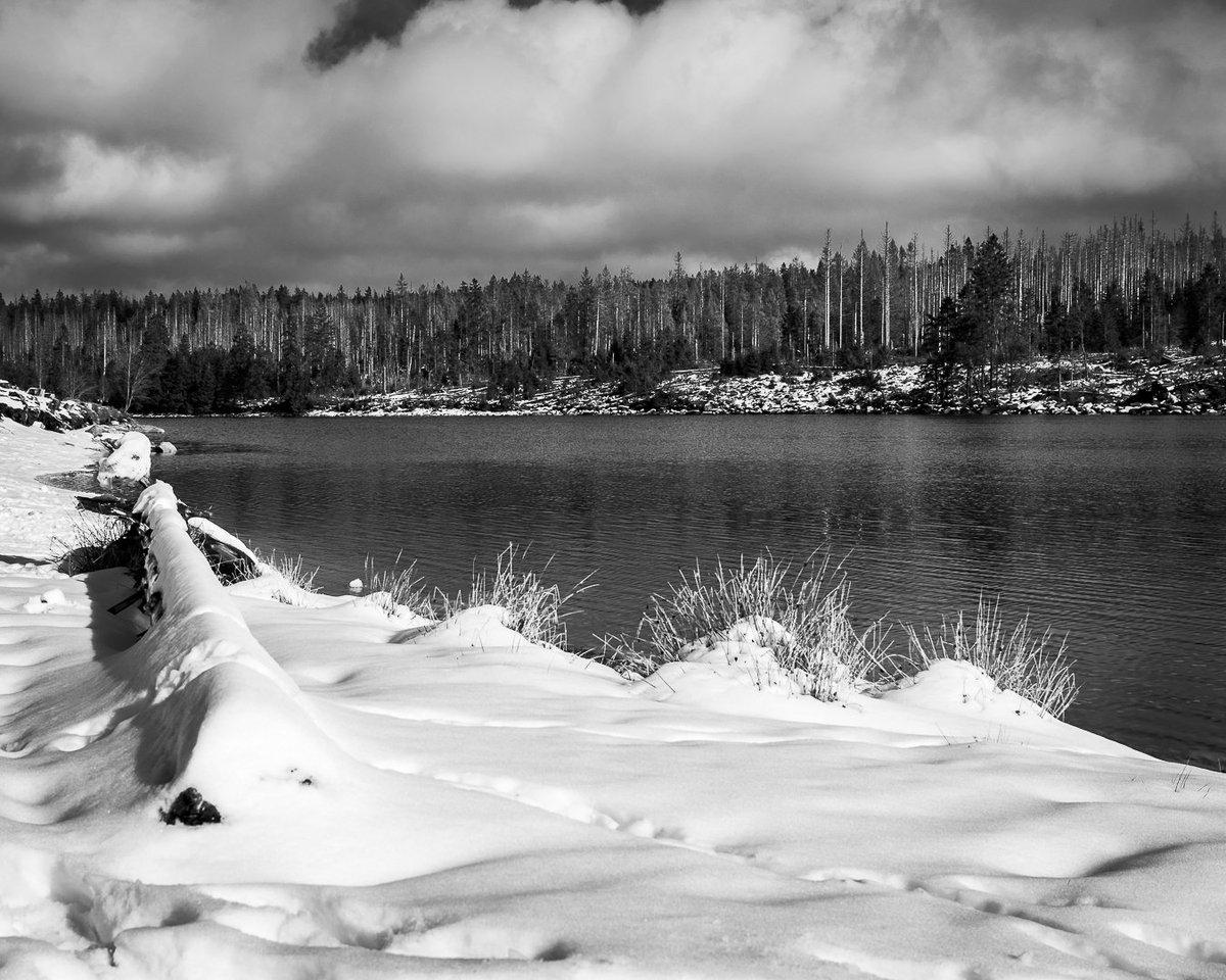 https://www.instagram.com/p/B8o6XqCCHaw/?igshid=lh0zzwdpzwrw…  #landscape #wasser #tree_captures #lakeview #naturfotografie #blackwhitephoto #lake #schwarzweiß #schwarzweissfotografie #schwarzweiss #Landschaft #landschaftsfotografie #loves_trees_rural #wandern #winterhike #forestpic.twitter.com/I5Iyd2Q4OB – at Oderteich