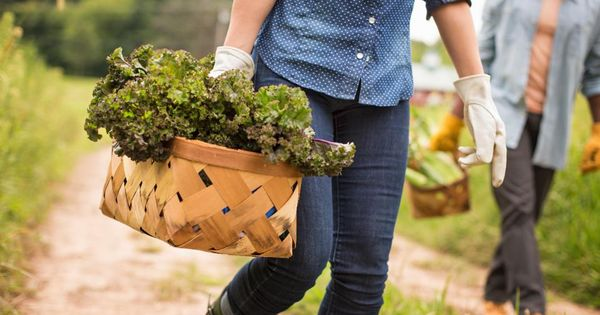 This Company Helps #Brands Build Consumer Trust With Transparent Farm-to-Fork #Food http://ow.ly/b0rf50yp5Anpic.twitter.com/eglnqTJa4a