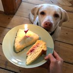 Image for the Tweet beginning: Another year, another scone! #HappyBirthday