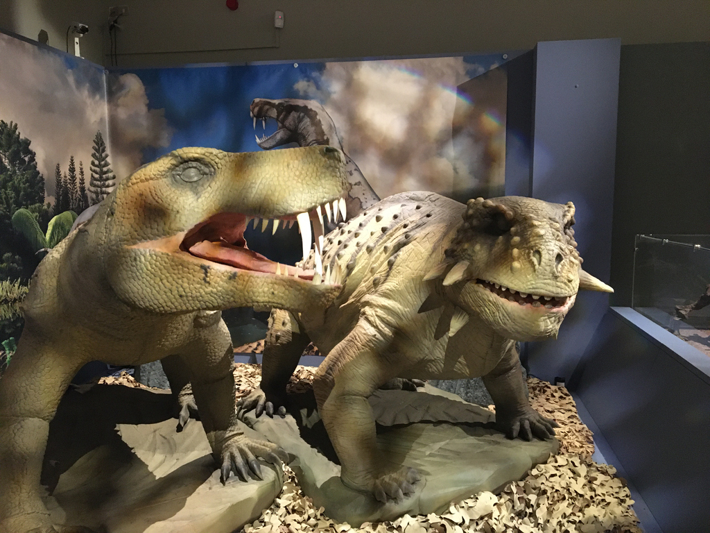 Permian Monsters: Life Before The Dinosaurs at Horniman Museum and Gardens!#ForestHill https://www.southlondonclub.co.uk/blog/permian-monsters-life-before-the-dinosaurs-at-horniman-museum-and-gardens…pic.twitter.com/dfVLfk25P5