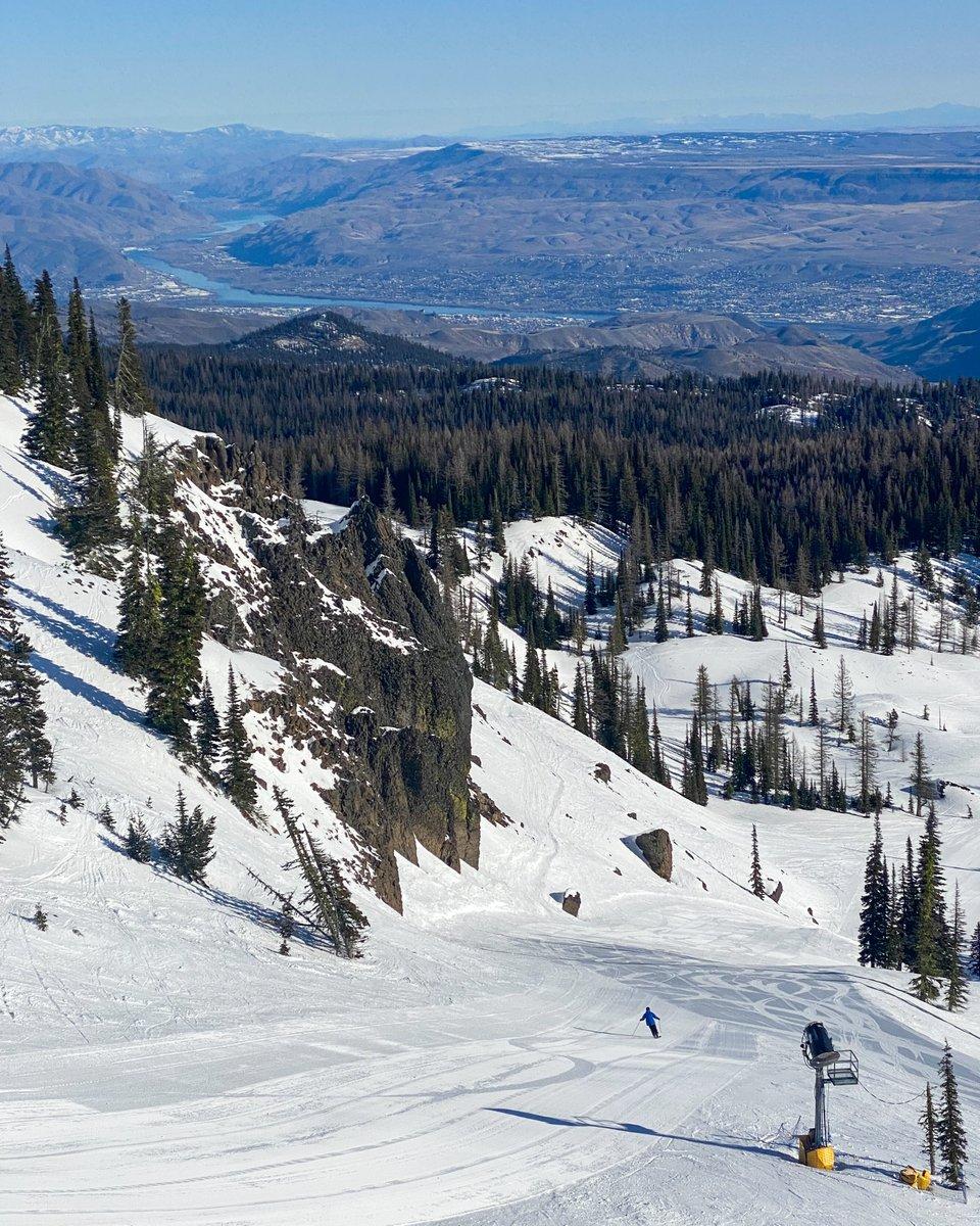 It is a beautiful bluebird day up here! Come enjoy some fresh corduroy and amazing views. #MissionRidge #Wenatchee #Ski #Snowboard #PNW #PNWonderland #SkiResort #509 #touchthewingpic.twitter.com/F5MYU2hSdy