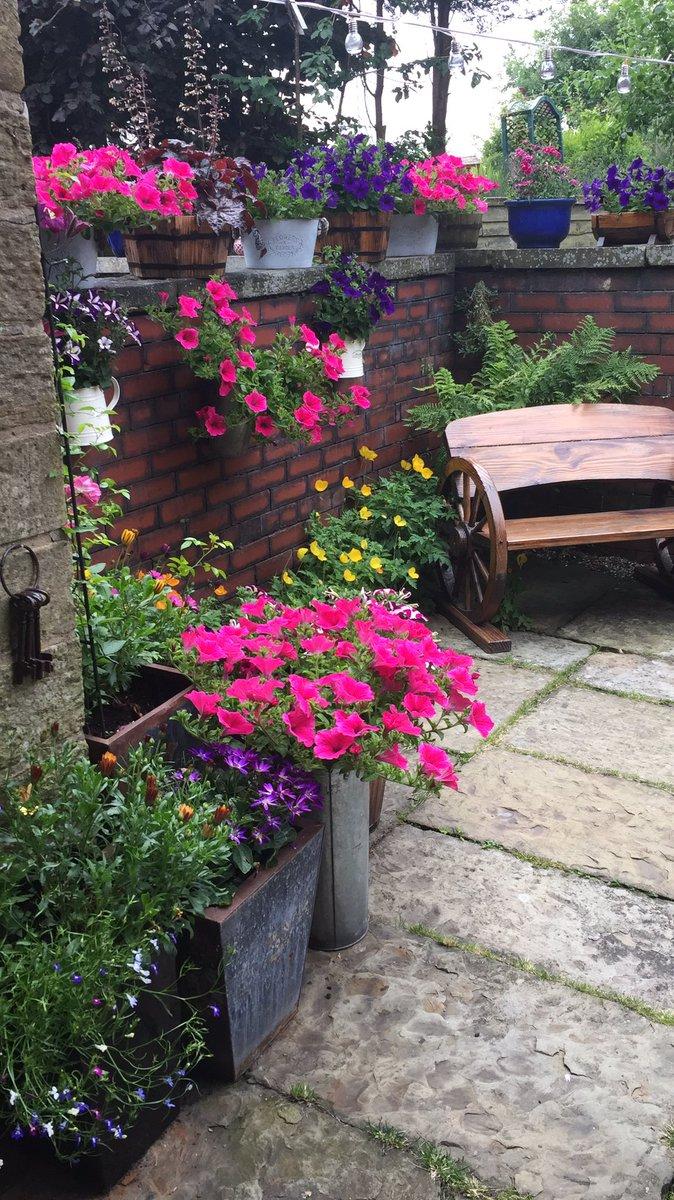 @5Naureen Naureen, this was a corner of my yarden in summer last year.