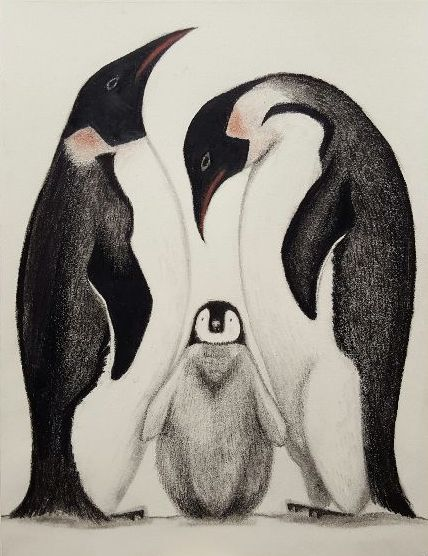 Art Live Lesson - Drawing | today @ 2pm EST (-5 UTC) on   #artlover #drawing #howtodraw #freelessons #Penguins