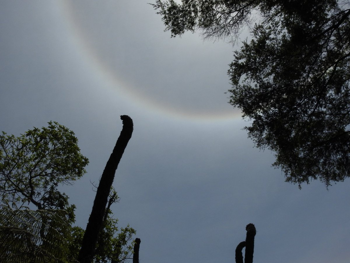 A halo around the sun is a fairly common phenomenon of Mother Nature. I was fortunate to capture one half a halo in New Zealand recently. #fms_photoaday #fms_showhalf  #halo #naturalphenomenon #mothernature #skypic.twitter.com/paDAACQDVw  by LindyLouMac Blogs