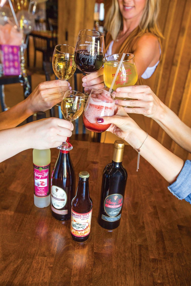 It's National Drink Wine Day!!! Hooray! What Ohio WIne County wine are you drinking today? Cheers! #NationalDrinkWineDay #bula #ohiofindithere #ohiowinecountry