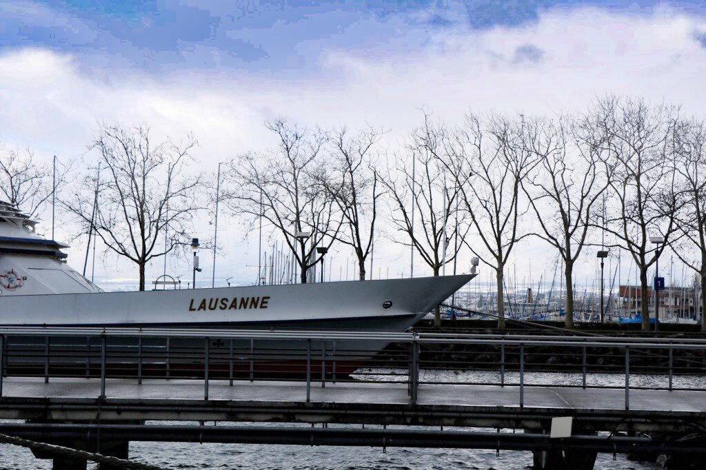 Binny from travel blog 'Binny's Food & Travel' gives you her top things to do on a Winter break in #Lausanne! @binnyjs @MySwitzerland_e #MyLausanne #inLOVEwithSWITZERLAND http://ow.ly/tPlz50ypbNApic.twitter.com/soghKmcslO