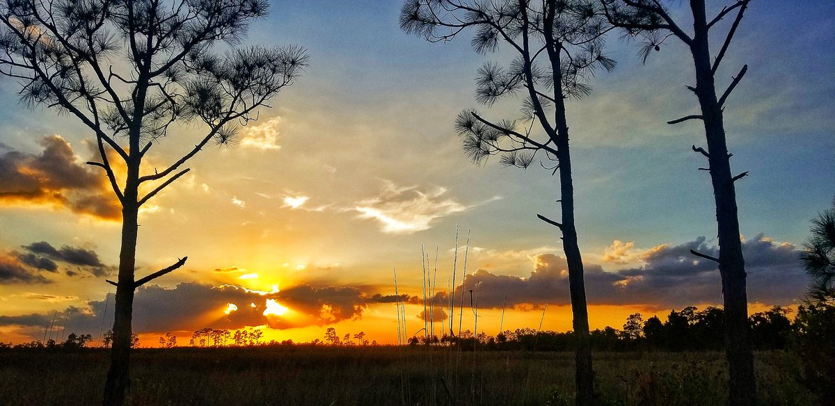 Nature always has the best props ever!   #sunset #goodnight #nightsky #photooftheday #photographer #landscape #nature #sky #beautiful @Nature_Florida @FloridaTop10 @FloridianCreat1 @ThePhotoHour @TheStormHour @TPGallery @EnjoyNature @TabletWallpaper @visitjupiter @l_p_magazine