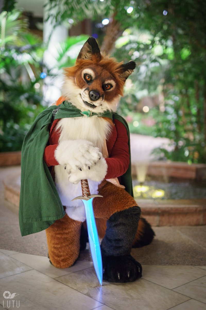 You have my sword, I'm gonna aid you on your quest!📸by @Lutufox