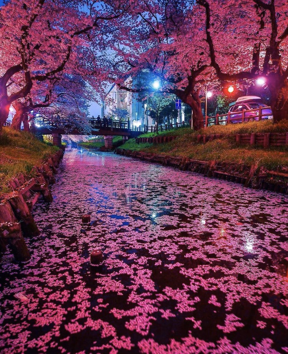 2. Japan 🇯🇵 Beautiful culture and unique traditions, tax-free shopping in #Tokyo and lots of #sushi  #Japan #liusms