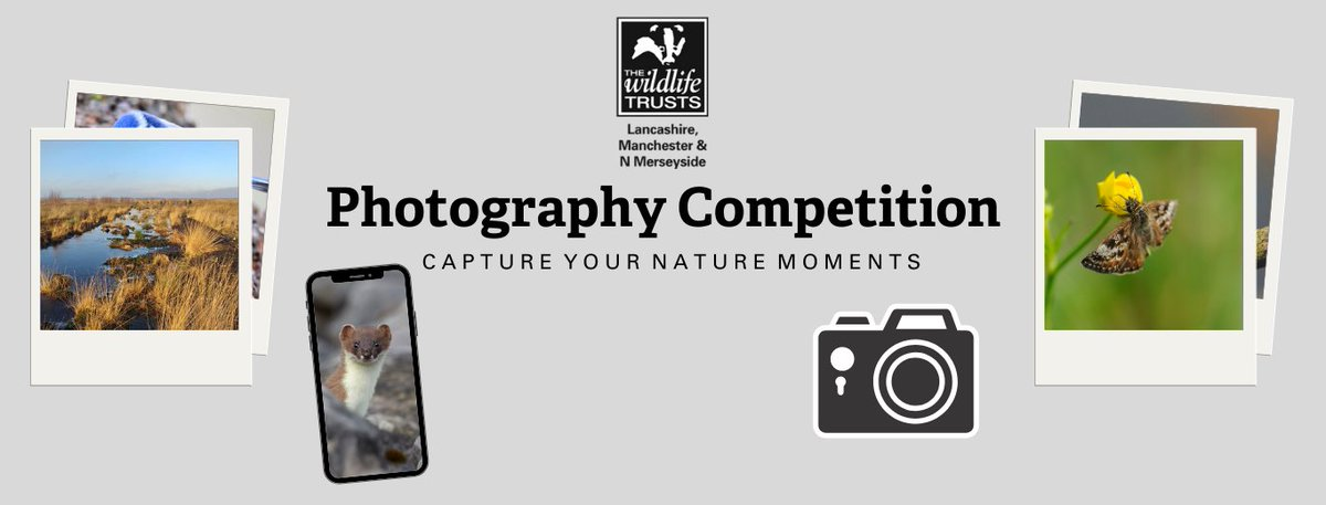 Have you entered the new #photography #competition yet? 📸   We're looking for your best photographs of winter birds on any @lancswildlife nature reserve and you could win a lovely prize! 🐦🦆   For more information 👉🏼