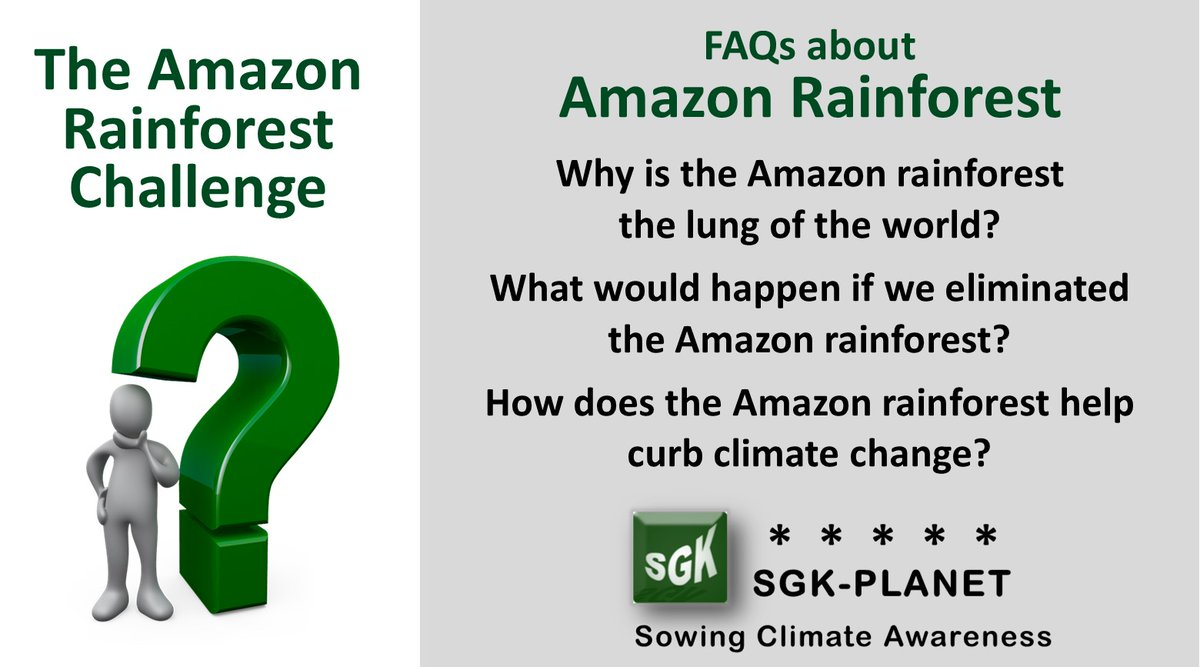 FAQs about #AmazonRainforest Test your knowing and try to answer before clicking here  https:// sgerendask.com/en/faqs-about- the-amazon-rainforest-the-worlds-lung/  … … SGK-PLANET #ClimateChange #GlobalWarming #ClimateEmergency #ClimateCrisis #Environment #Sustainability #ClimateAction  #Desertification #ForestFire #AmazonForest<br>http://pic.twitter.com/08g0yNQYF2