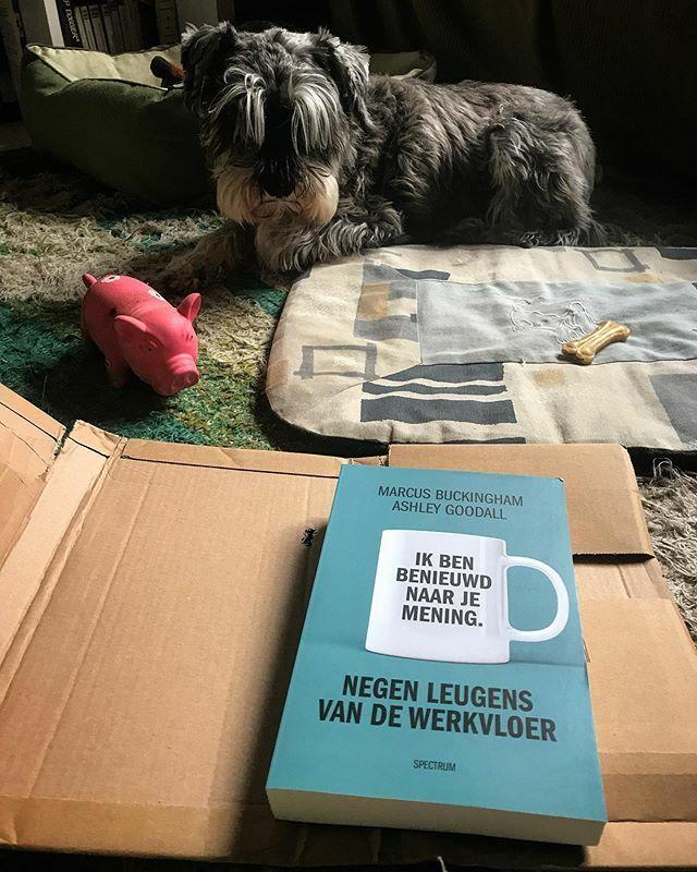 Net 'n nieuw Nederlands boek ontvangen... van @frankwatching: Hartstikke bedankt! • #lekkerlezen #winwin #boekenactie • Tenemos nueva lectura en holandés gracias a @frankwatching #concurso • #happy #winnen #ganar #feliz #read #gelukkig #pancho #doglo…