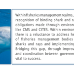 Image for the Tweet beginning: #CMSCOP13 is on this week.