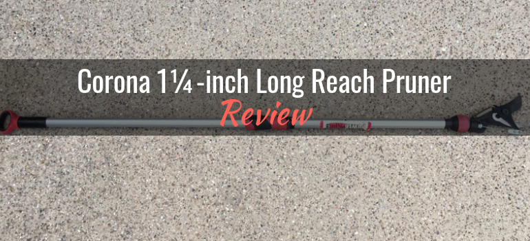 Check out our review of this handy stick pruner from @coronatools! Corona 1¼-inch Long Reach Pruner (TP 3206): Product Review http://bit.ly/2tkHZSe  #gpreview #stickpruner #longreachpruner #coronatools #pruning #gardening #pruningtoolspic.twitter.com/evDXdaZKhm