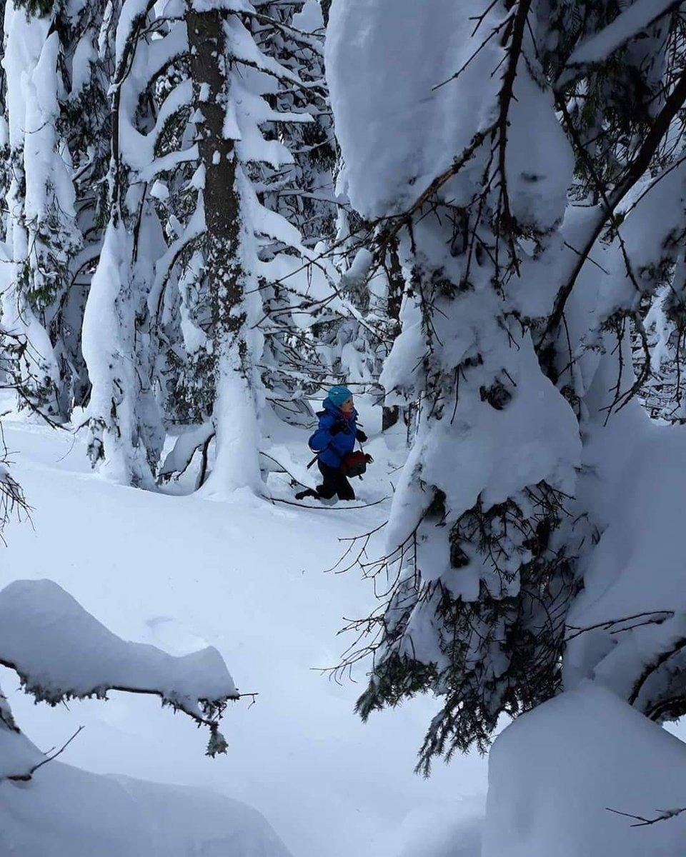 Go where you feel most #alive  #hikingisheaven #winterwonderland #winter #neverstopexploring #mountainlove #winterhiking #naturephotography #naturelover #whatawonderfulworld #whenindoubtgohiking #dowhatmakesyouhappy #wonderful_placespic.twitter.com/ft04qXh5Ac