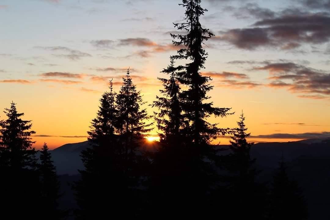 Such a perfect #sunset  #hikingisheaven #hikemoreworryless #sunsetcolors #mountainlove #naturephotography #natureismagic #cozia #amazingnature #hikingworldwide #hikingstories #whenindoubtgohiking #wonderful_places #whatawonderfulworldpic.twitter.com/ZylPS7Zis8