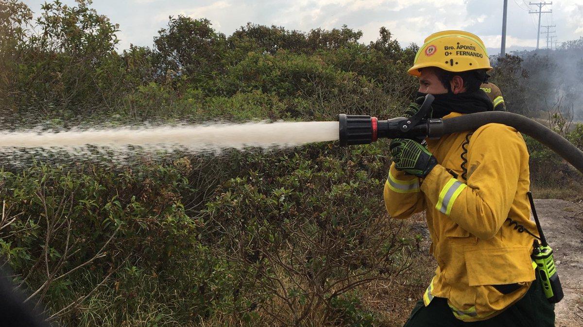 Bomberos de las estaciones Kennedy, Bosa, Candelaria y Fontibón, junto a brigadas forestales de Bomberos Voluntarios, Defensa Civil y Cruz Roja, controlan en un 90% un incendio forestal en el Humedal Tibanica. A la hora se hace control de puntos calientes y enfriamiento del lugar