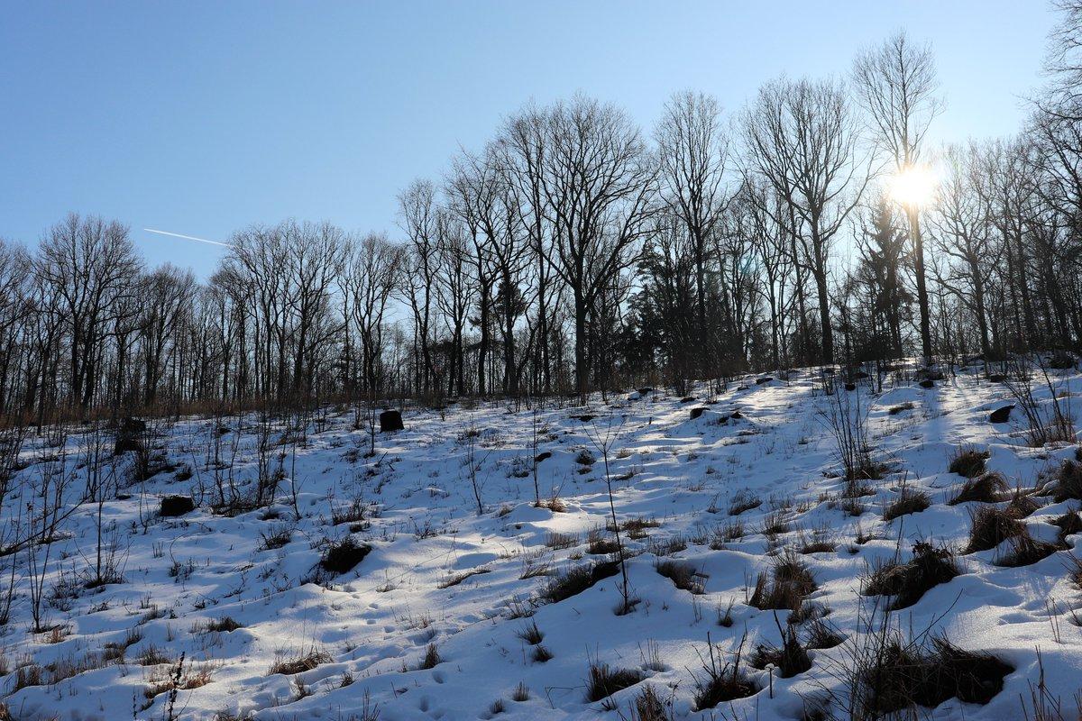 Zima už asi nebude, tak malá vzpomínka jak to bylo přesně před rokem.  Inspirace @SonGerekova  #ZimníFotka 18.2.2019pic.twitter.com/KRRE2tGLNY