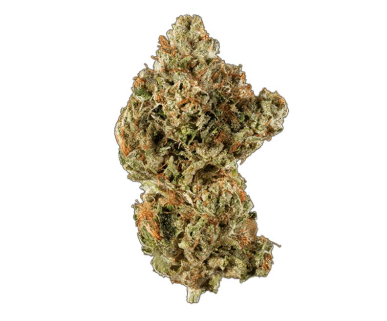 Dolato from @KanaPostBC added to catalog https://leafreviews.ca/flower/dolato-by-kana-post/… Coupon: leafreviews  #weed #cannabis #cannabiscanada #weedlover #thc #cbd #cbdheals #healing #Canada #Ontario #Toronto #the6ix #cannabisculture #coupons #discountpic.twitter.com/6yLxRTRguT