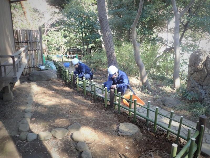 紅葉亭わきの通路に、四ツ目垣を作成しました。 通路の曲線を青竹が引き立てます。 青い竹の色合いは、ひと月ほど楽しめます。 新しい竹垣は清々しい気持ちになりますね。 #殿ヶ谷戸庭園 #日本庭園 #国分寺市 #竹垣 #OnTripAdivosrpic.twitter.com/Sk9gdzacbF