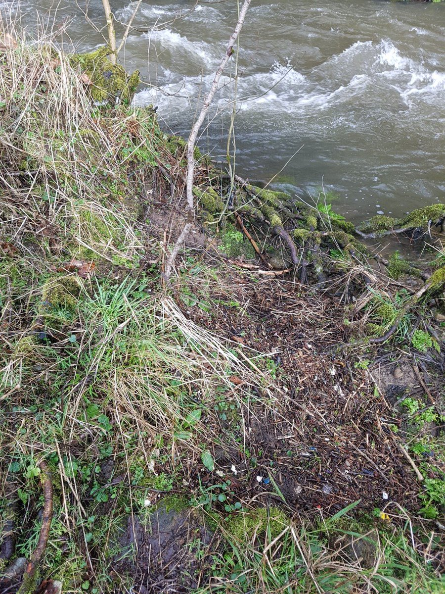 Check out this before and after transformation! Litter is a problem our Healthy Rivers project comes across regularly on their river cleanup outings. #transformationtuesday