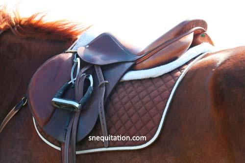 Quelles sont les particularités d'une #selle 𝟏𝟕 𝒑𝒐𝒖𝒄𝒆𝒔 ❓ 🤔 . Découvrez si elle est faite pour vous ! 💡 ⏩  . #equitation #chevaux #horses #guide #saddle #zaldi #cavalier #equipement #coursehippique