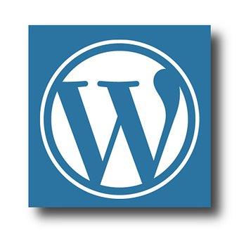 Hulp nodig met het werken in het Probu WordPress CMS? Geen paniek! Wij helpen je graag verder en leggen je alles rustig uit! #service