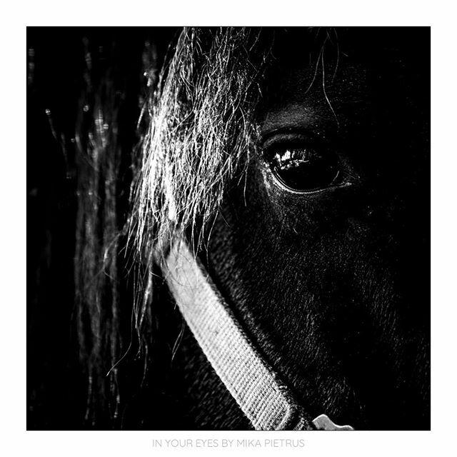 in your eyes.  #bnw_dream #art_photography #bnw_instg #bnwsouls #bnw_artstyle #bnw_detaillovers #bnw_fabulus #passion_for_bnw #bw_addiction #35magazine #toprepostme #monochrome #blackandwhitephoto #bwphotography #insta_bw #bw_society #bnwmood #monoart #n… https://ift.tt/2HIdY5Lpic.twitter.com/8YiAz9uX7J